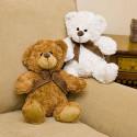 Plush Mini Toby & Mel Bear Birthdays & Valentine's Day Perfect Gift