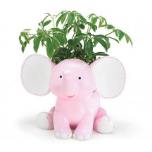 Adorable Decorative Elephant Plant Holder A Great Gift For A Baby Girl